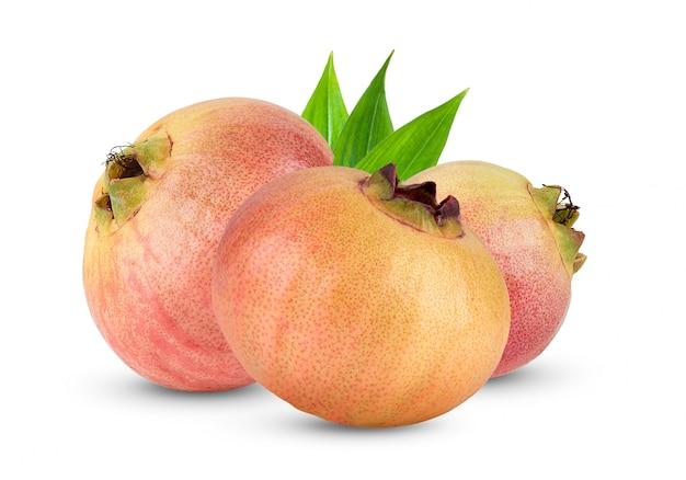 Jambos de syzygium ou maçã rosa isolado no branco