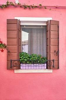 Janela com venezianas marrons e flores na panela. itália, veneza, burano
