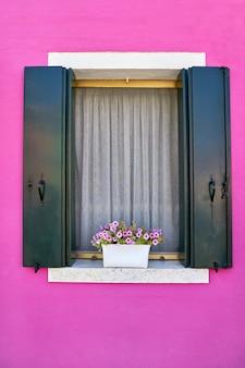 Janela com venezianas verdes na parede rosa brilhante de casas com flores cor de rosa. itália, veneza, burano.