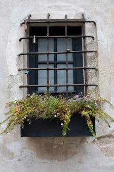 Janela de madeira com grades e canteiros de flores. foto de close