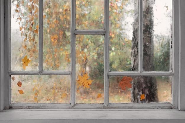 Janela de madeira velha branca com gotas de chuva e folhas de outono