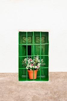 Janela vintage decorativa verde intensa com uma planta de plástico colorida em um vaso