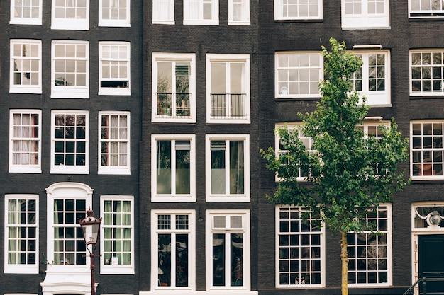 Janelas dos edifícios em amsterdam