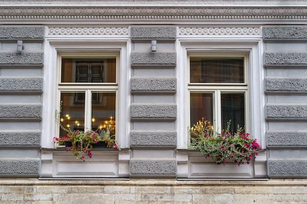 Janelas simétricas com plantas e flores em uma fachada de aparência clássica.