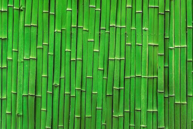 Jangada de bambu
