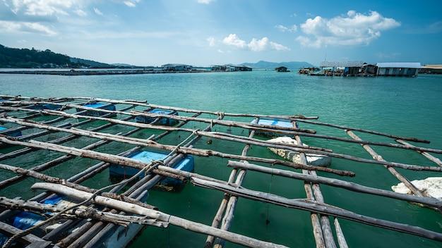 Jangada de peixe e pesca de bóia