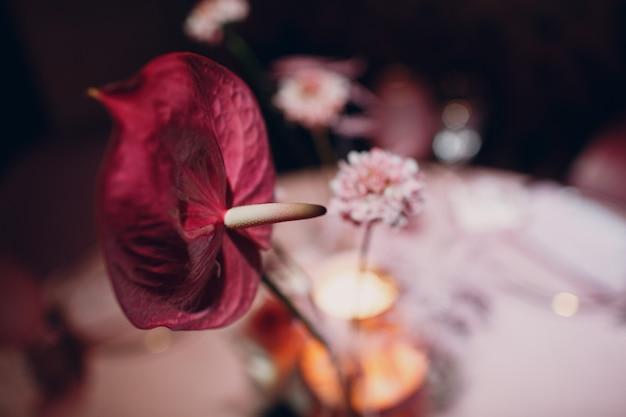 Jantar romântico em mesa de flores rosa em restaurante