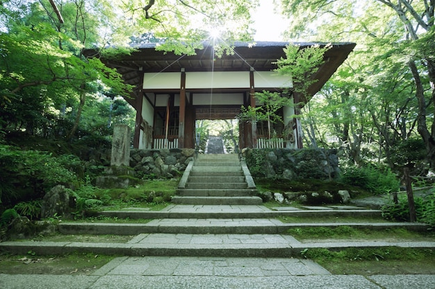 Japão tample em árvores verdes com o pôr do sol