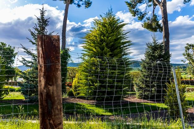 Jardim atrás da cerca de metal em um dia com céu azul e nuvens.