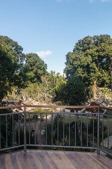 Jardim botânico no rio de janeiro, brasil - 4 de agosto de 2021: vista do jardim botânico no rio de janeiro.