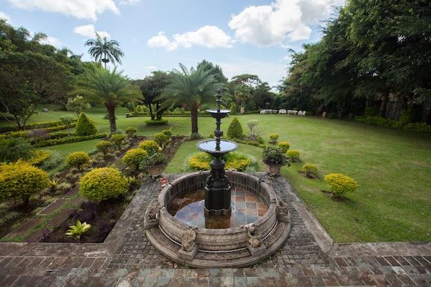 Jardim da fonte e palmeiras