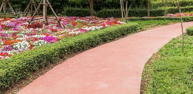 Jardim de flores muito bem cuidado