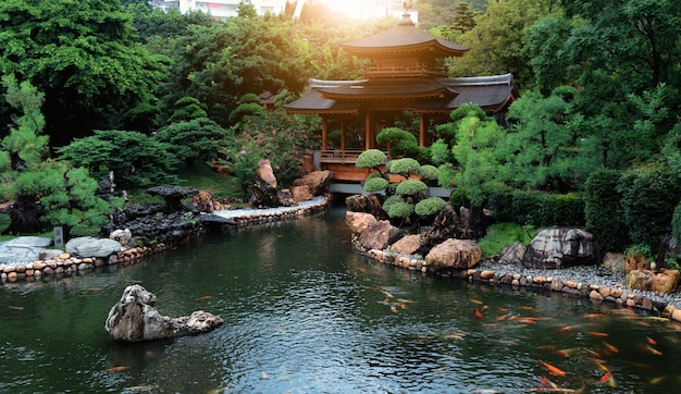 Jardim de relaxamento