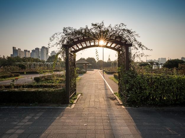 Jardim em seul, fundo nascer do sol de manhã