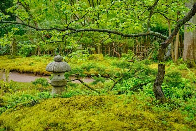 Jardim japonês parque clingendael hague holanda