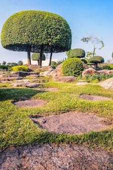 Jardim japonês pitoresco. topiária de jardim japonês chinês