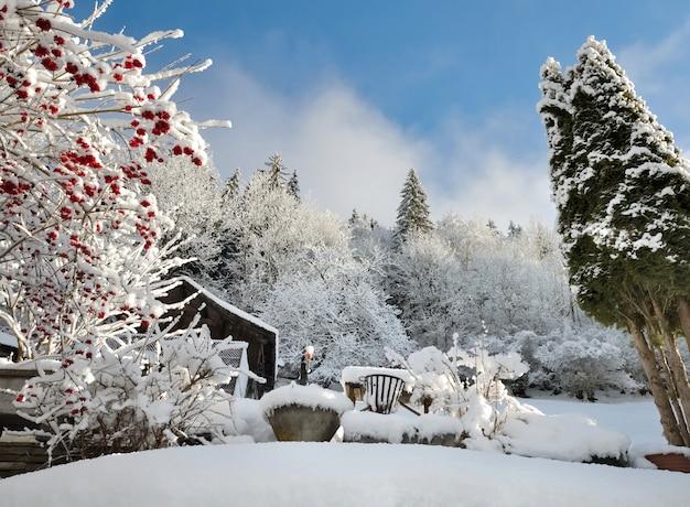 Jardim no inverno coberto pela paisagem de neve