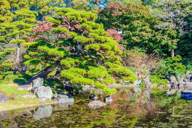 Jardim no parque no palácio imperial