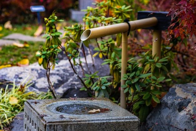 Jardim outonal japonês