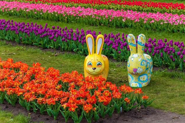 Jardim primavera de tulipas coloridas em um canteiro de flores na cidade. tulipas coloridas em um canteiro de flores. tulipas lindas da primavera no jardim. camas com tulipas