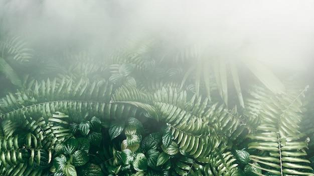 Jardim vertical com folha verde tropical com nevoeiro e chuva tom escuro