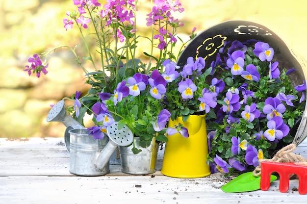 Jardinagem e ferramentas