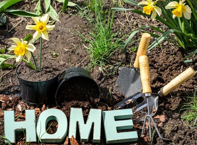 Jardinagem, lindas flores da primavera com material de jardim