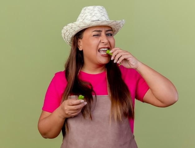 Jardineira de meia-idade com avental e chapéu segurando metades de pimenta verde