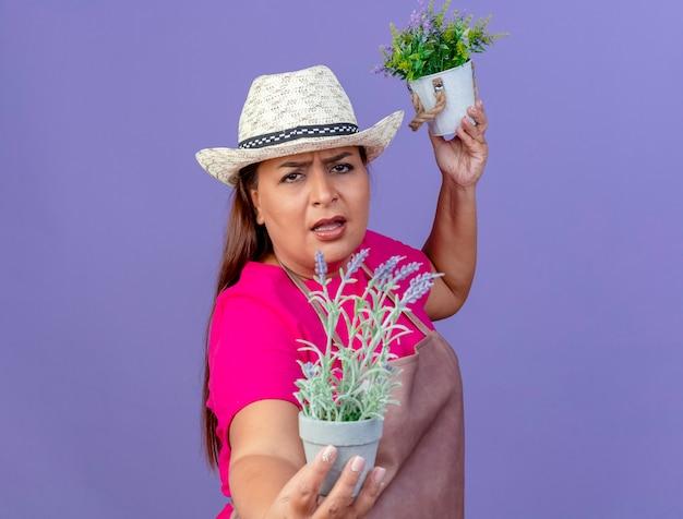 Jardineira de meia-idade com avental e chapéu segurando vasos de plantas olhando para a câmera com uma cara zangada sobre um fundo roxo