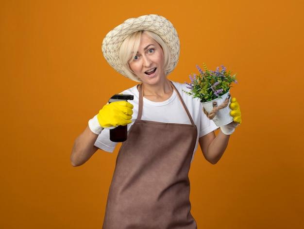 Jardineira de meia-idade impressionada com uniforme de jardineiro, usando chapéu e luvas de jardinagem, segurando um vaso de flores e regando, olhando para a frente, isolada em uma parede laranja com espaço de cópia
