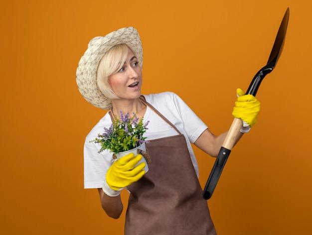 Jardineira de meia-idade impressionada com uniforme de jardineiro usando chapéu e luvas de jardinagem segurando um vaso de flores e uma pá olhando para uma pá isolada na parede laranja