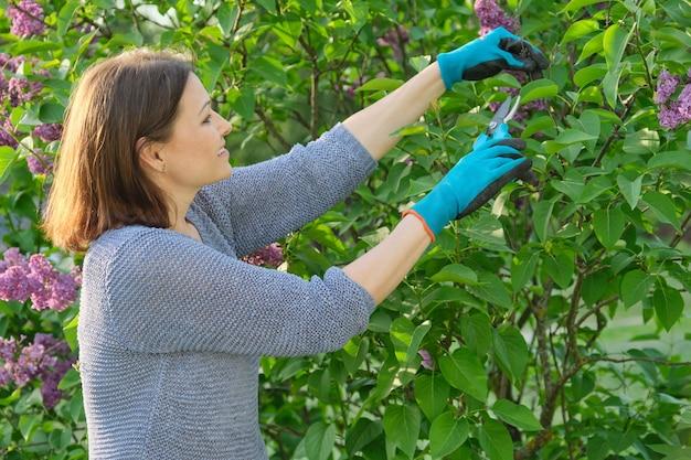 Jardineira feminina em luvas com tesouras de podar cortando ramos de lilás