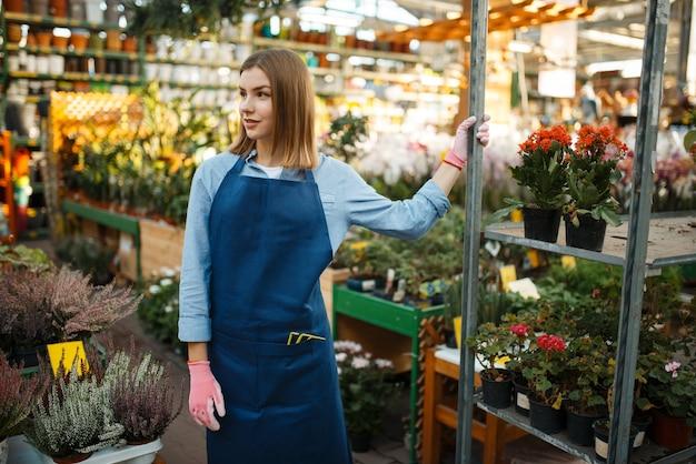 Jardineira feminina em luvas e avental, venda de flores para casa, loja de jardinagem. mulher vende plantas em floricultura, vendedora