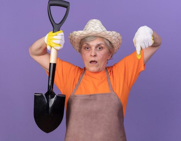Jardineira idosa e ansiosa usando um chapéu de jardinagem e luvas, segurando uma pá e apontando para baixo, isolada na parede roxa com espaço de cópia