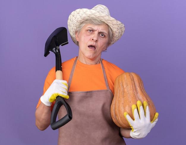 Jardineira idosa, irritada, usando luvas e chapéu de jardinagem, segurando uma abóbora e uma pá no ombro