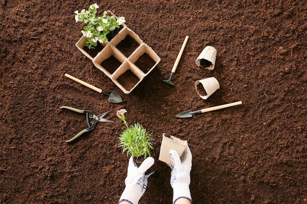 Jardineira plantando flores ao ar livre