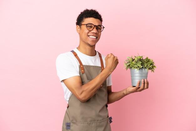 Jardineiro africano segurando uma planta em um fundo rosa comemorando uma vitória