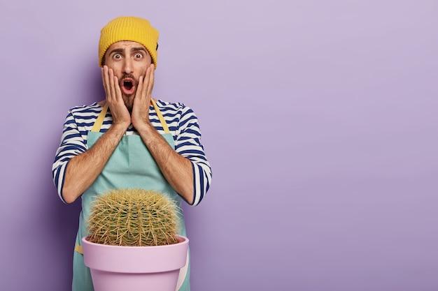Jardineiro bonito e estupefato posando com um grande cacto em um vaso