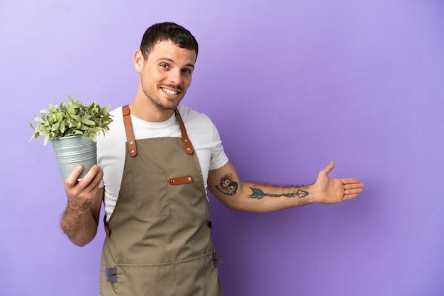 Jardineiro brasileiro segurando uma planta sobre um fundo roxo isolado estendendo as mãos para o lado para convidar para vir