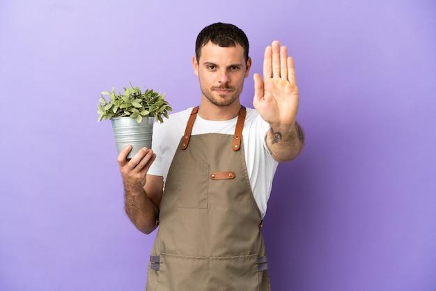 Jardineiro brasileiro segurando uma planta sobre um fundo roxo isolado fazendo gesto de pare