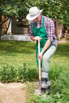 Jardineiro cuida do jardim na primavera