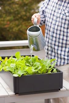 Jardineiro de homem regando a horta em recipiente na varanda