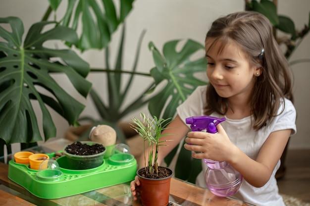 Jardineiro de menina engraçada com plantas na sala em casa, regando e cuidando das plantas de interior, transplantes de flores.