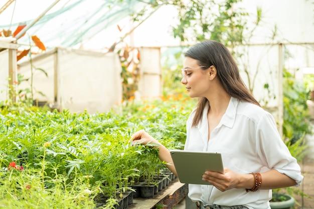 Jardineiro de mulheres de negócios atraente em copos usando o tablet. tecnologia moderna em jardinagem.