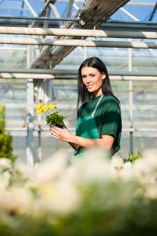 Jardineiro feminino no jardim do mercado