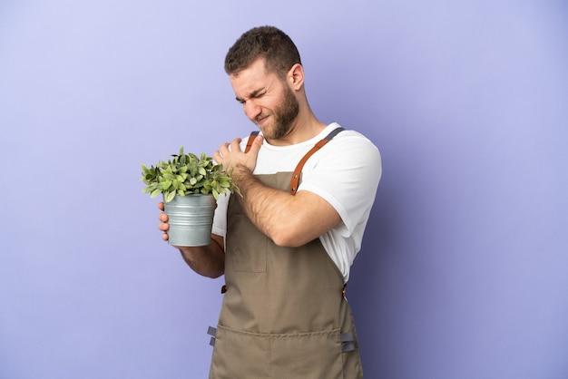 Jardineiro homem caucasiano segurando uma planta isolada na parede amarela, sofrendo de dor no ombro por ter feito um esforço