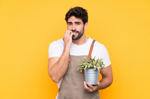 Jardineiro homem com barba sobre parede amarela isolada, nervoso e assustado