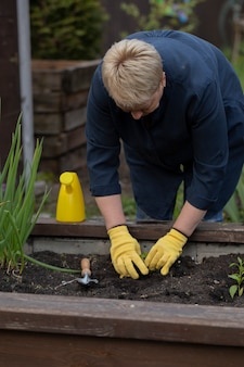 Jardineiro maduro feminino plantar jovem planta pequena, trabalhando no jardim com pá