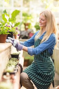 Jardineiro, mantendo a planta em vaso no muro de contenção