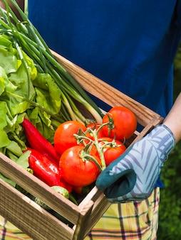 Jardineiro masculino segurando a caixa de madeira com legumes frescos